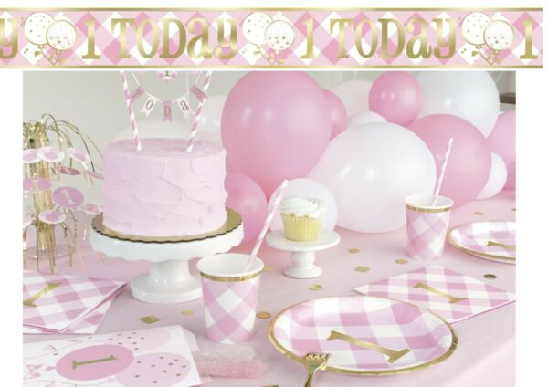 Pink Gingham 1st First Birthday Girls Party Supplies Tableware