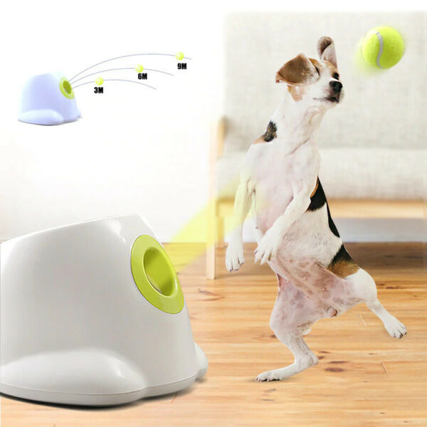 Dog tennis ball Launcher Automatic throwing machine throw device for small dogs  $117.98