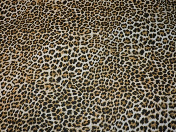 Leopard Cheetah Animal Print 100% Cotton Fabric 1 2 Yard Precut 18quot;x43quot;