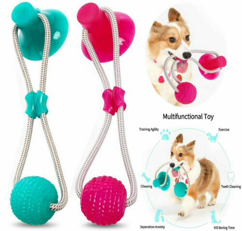 Pet Molar Biting Toy Dog Tug Of War Chewing Toy With Suction Cup US $9.59