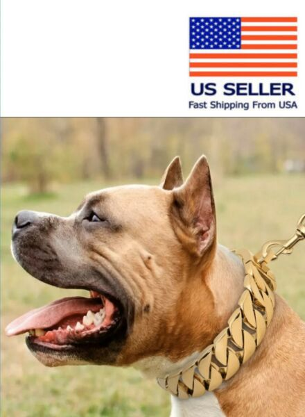 Luxury Dog Chain Collar Stainless Steel 22inch Dog Heavy Duty Choker Necklace $110.00