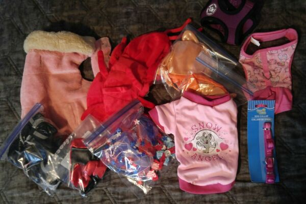 Wonderful lot of 11 Items for a Small Dog costumes winter wear harness $20.00