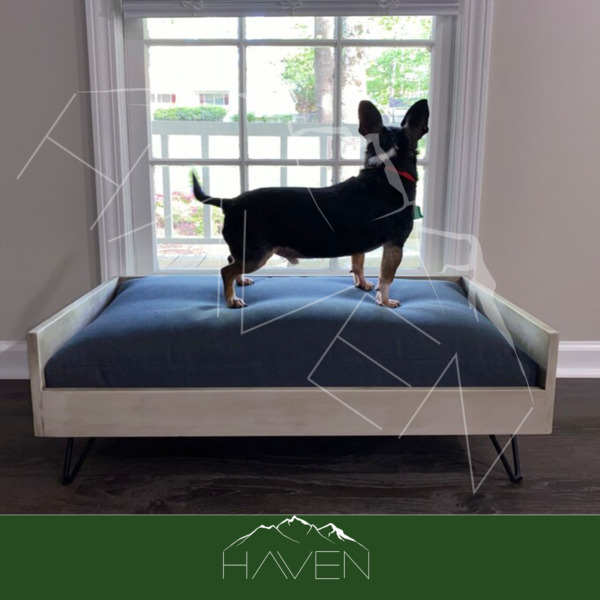 Dog Bed Sofa Couch Indoor Modern Elevated Modern Wooden Frame Medium up to 40lb $129.00