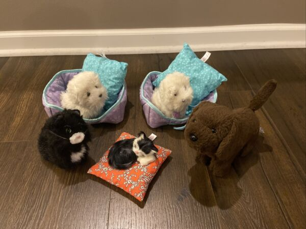 American Girl Doll Pets Dog Kitty Pet Bed Lots Chocolate Lab Black Cat Coconut $89.99