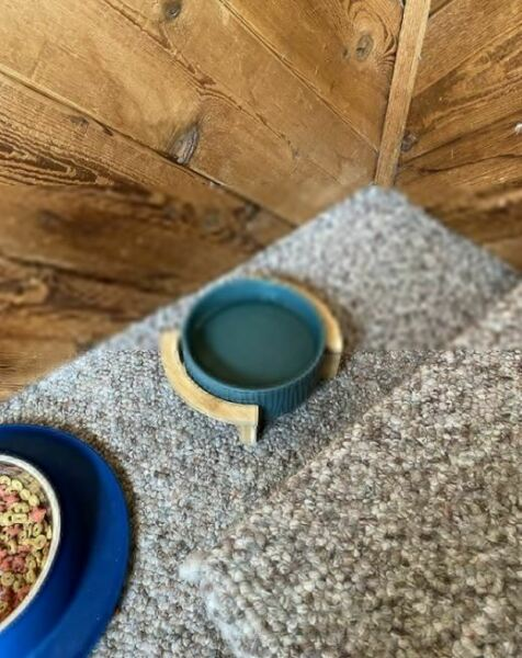 Pets Cat Or Small Dog Dishes Caremic 2 Bowls Blue Color Wooden Standing $70.99