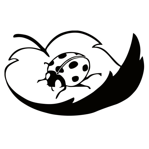 Ladybug vinyl decal sticker for Car/Truck Window leaf computer wall laptop