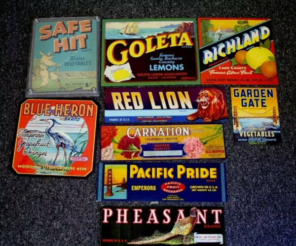 7 VINTAGE PRODUCE LABELS NEVER USED LOT ACRYLIC DISPLAY VARIOUS SIZES C