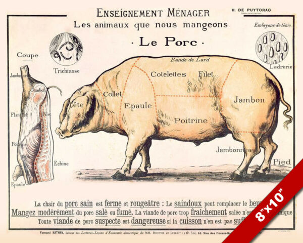 Vintage French Le Porc Meat Diagram Poster Painting 8x10 Real Canvas Art Print $12.99