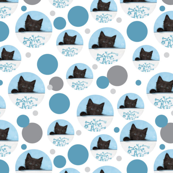 Black Kitten Cat in Bucket Tin Pail Premium Gift Wrap Wrapping Paper Roll