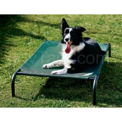 Coolaroo Dog Bed with Frame Small Medium Large 4 Colors $10 Flat Shipping $33.99
