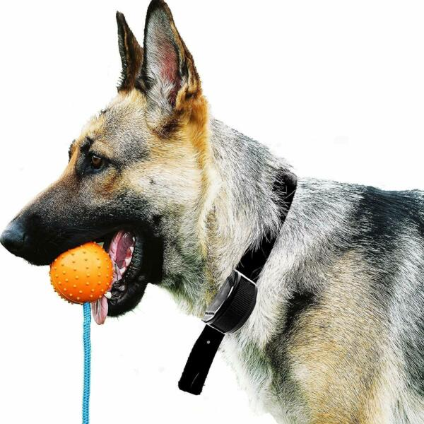 Dog Ball Launcher Thrower Pro K-9 Training Sport Mental Toy Tug Fast Toss Fetch