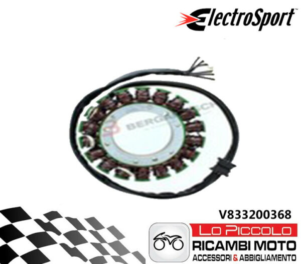 Kawasaki VN Classic 1700 2012 2013 2014 Stator Ignition Magnet Electrosport