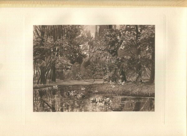 ANTIQUE A POOL POND DUCKS MARSH FOREST WOODS ARTIST A. DURST NATURE ART PRINT