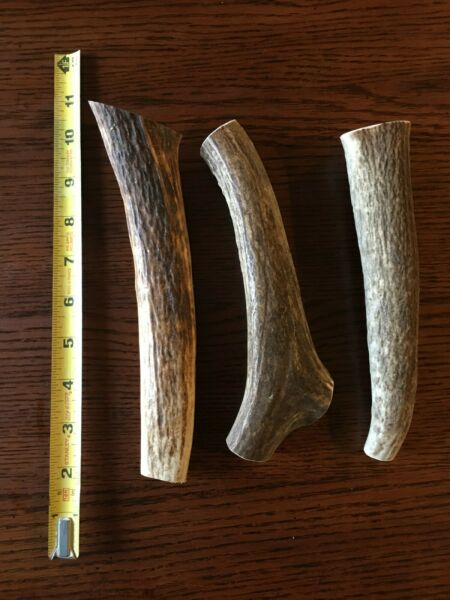 1 lb Antler Dog Chews Low Price High Quality All Natural Antlers $24.99