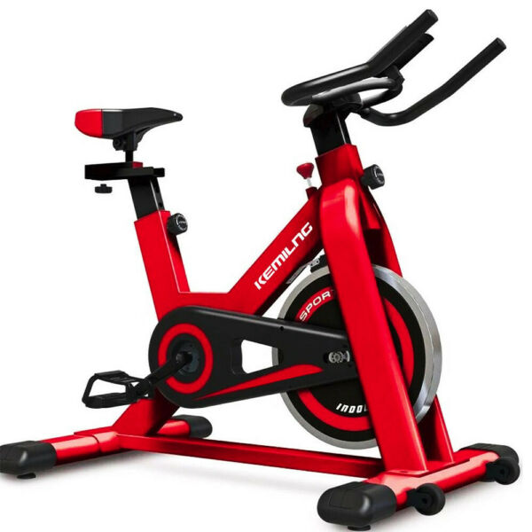 Stationary Exercise Bicycle Indoor Bike Cardio Health Cycling Home Fitness Red $219.99