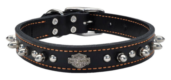 1quot; Coastal Dog Pet Collar Harley Davidson Motorcycles Leather Spiked Stud 18quot; $50.00