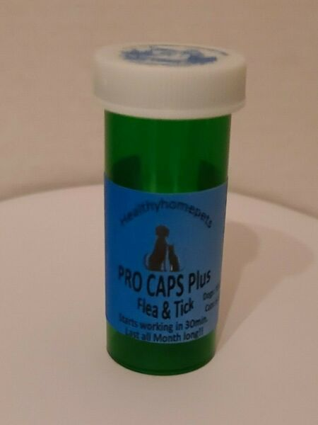 Flea amp; Tick control killer Dogs10 20lb Cats 6.1 12lb 30 day pill 6 month supply $32.99