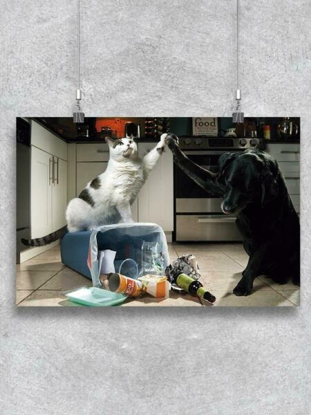 Cat And Dog High Five Poster Image by Shutterstock $13.99