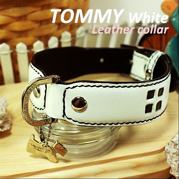 Luxury and Cute Dog Collar Tommy White Genuine Leather Whiteamp;Black Leash $33.95