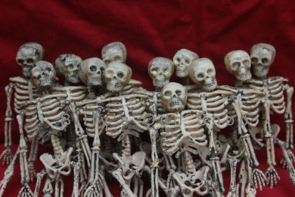 12 Lot Miniature Dollhouse Plastic Skeletons 6quot; inch Small Halloween Decoration $76.99