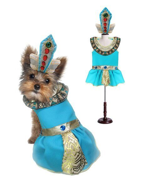 CLEOPATRA DOG COSTUMES Dress Your Dogs as Jeweled Egyptian Princess Outfit $46.89