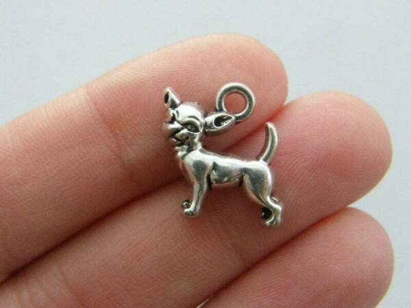 4 Chihuahua dog charms antique silver tone A796 GBP 2.30