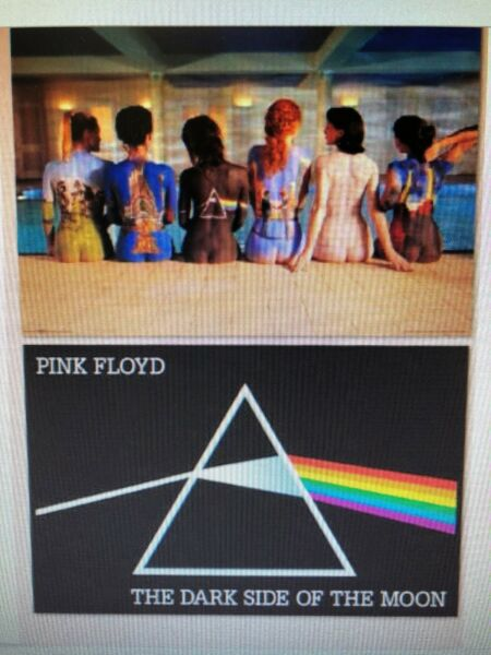 Pink Floyd 2 Individual Posters England Rock The Division Bell Back Catalog New $15.99