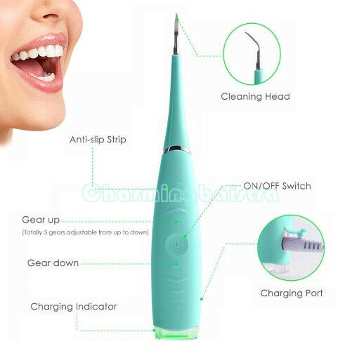Oral Clean Sonic Dental Scaler Teeth Whitening Tartar Plaque Stains Remover USPS