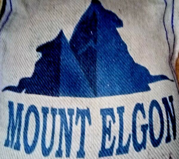 Uganda - Mount Elgon - A Grade - RAC - Unroasted Green Coffee