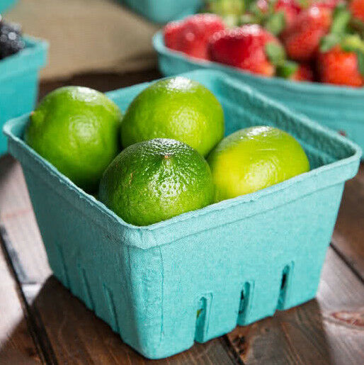 500 CASE 1 Quart Green Berry Produce Basket Molded Pulp Cardboard Container Qt