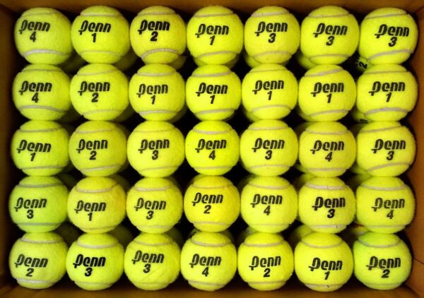 100 used tennis balls -  FREE SHIPPING - SAME DAY!  Support our Non-profit