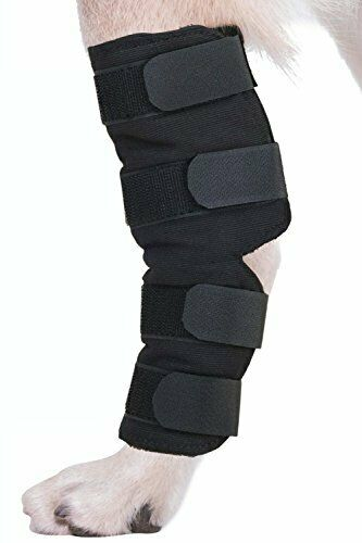 Supportive Therapeutic Dog Hock Brace Joint Wrap for Rear Leg Pain Reduction $29.99