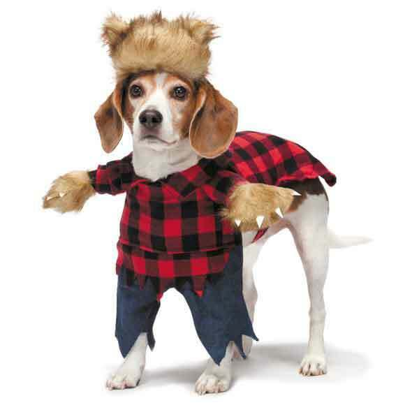 Zack amp; Zoey Werewolf Costumes for Dogs Halloween Costumes for Dogs $29.99