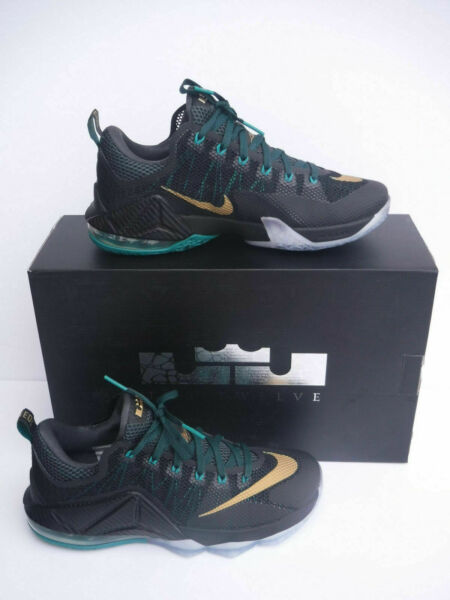 Nike LEBRON XII 12 Low SVSM Carbon Fiber Basketball Shoes Sneakers Men's Size 9