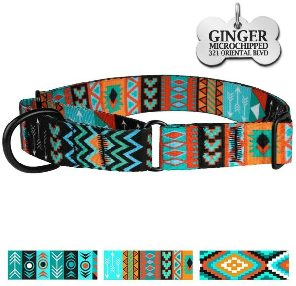 Martingale Collars for Dogs Safety Training Collar Dog Control Engraved ID Tag $13.99