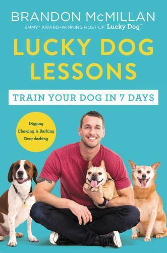 Lucky Dog Lessons: Train Your Dog in 7 Days Paperback VERY GOOD $4.88