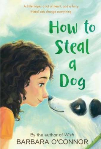How to Steal a Dog: A Novel Paperback By O#x27;Connor Barbara GOOD $3.59