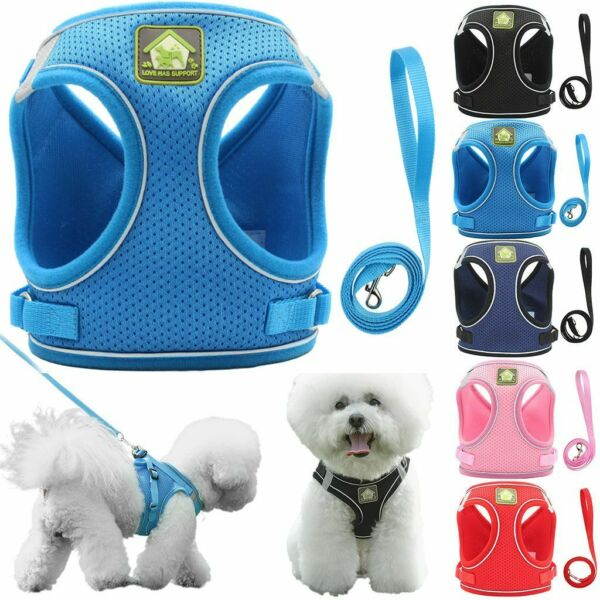 US Pet Puppy Harness Breathable Mesh And Leash Set Vest Chest Strap Small Dog