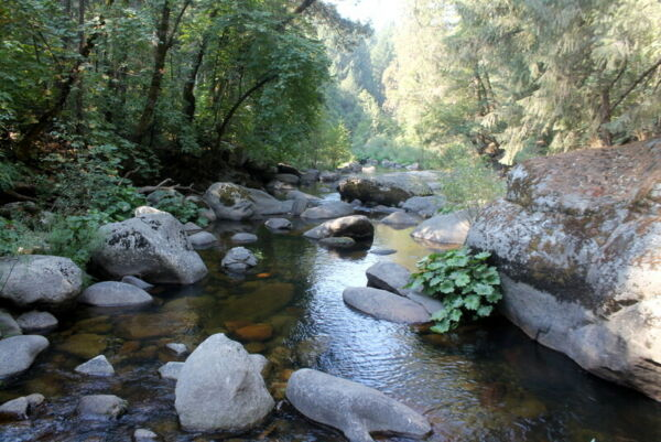 Rare South Stanislaus River Placer Gold Mining Claim Near Famous Italian Bar
