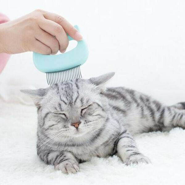 2 Pcs Pet Supplies Grooming Cat Dog Shell Comb Pets Soft Hair Removal BluePink $8.95
