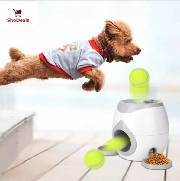 Best Automatic Pet Dog Launcher Tennis Ball Toy Interact Fetch Training Thrower $49.99