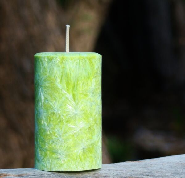200hr Green FRESH MOUNTAIN AIR Scented CANDLE Eliminate Laundry amp; Wet Dog Smell AU $25.00