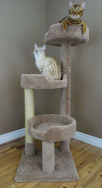 Cat Tree House Scratching Post Pet Furniture Kitten Play Sissal Bed Tower New $134.99