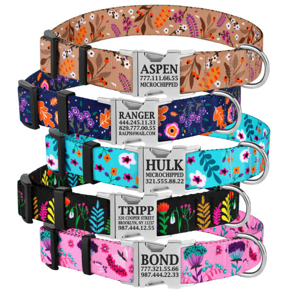 Floral Female Dog Collar Personalized Engraved Metal Buckle with Name Puppy S L $15.99