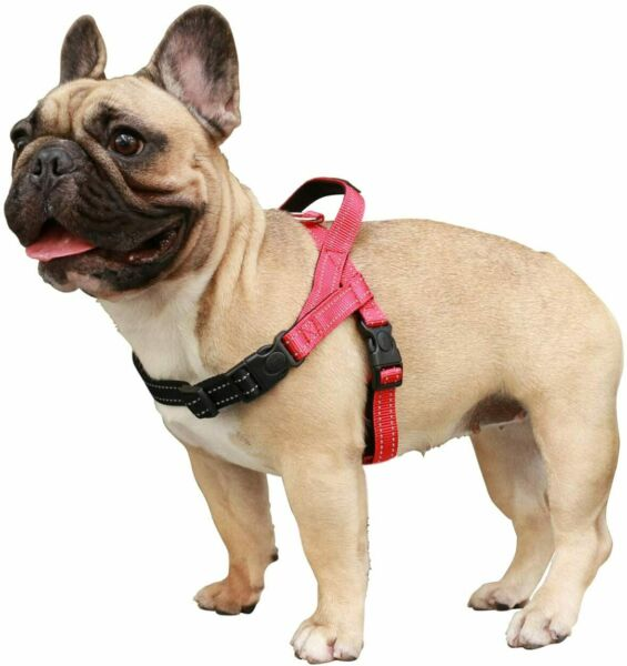 Dog Harness Easy On and Off Adjustable Harness Lightweight Harness Small Medium $14.99