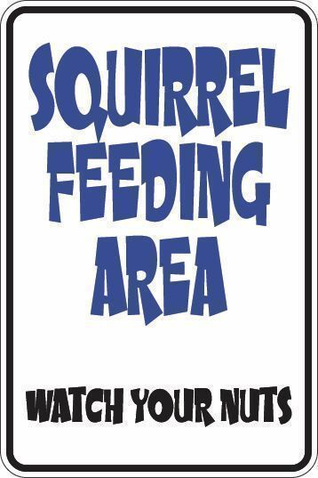 *Aluminum* Squirrel Feeding Area Watch Your Nuts 8