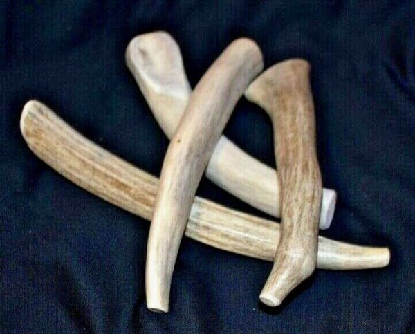 Four 4 Natural Organic Deer And Elk Antler Dog Chew Hard