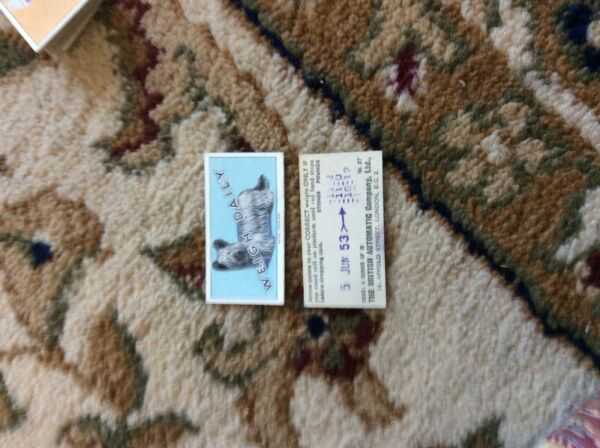 BRITISH AUTOMATIC DOGS 1ST SERIES WITH WEIGH DAILY # 27 skye terrier GBP 1.75