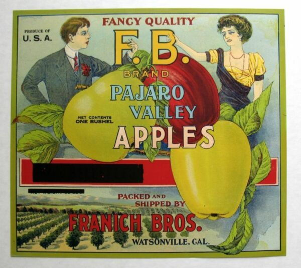 Rare 1910s Victorian Man and Woman Rare Apple Crate Label