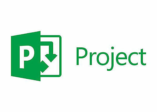 Microsoft Project Professional 2016 - FATTURABILE